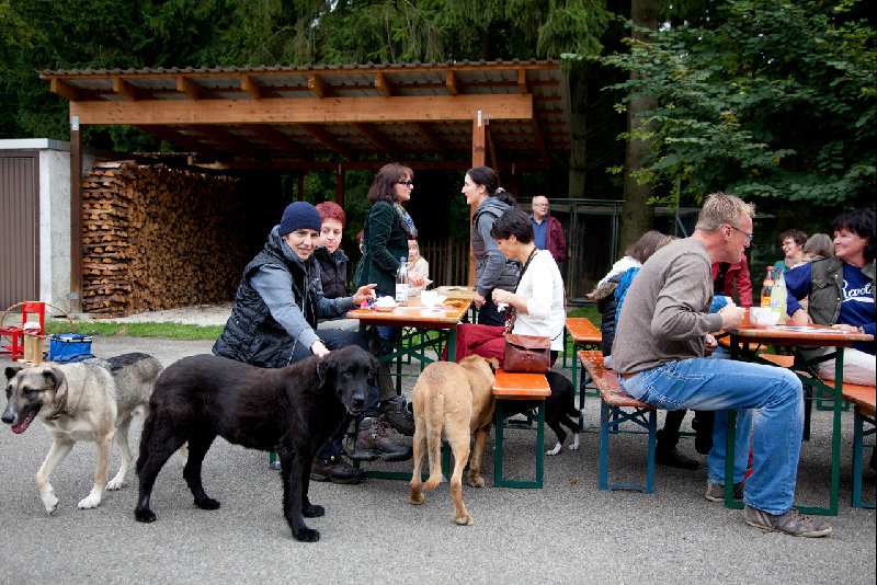 2014 – Wochenenden der offenen Tür