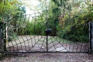 Ingolstädter Villa wird Zuflucht für verletzte und alte Tiere