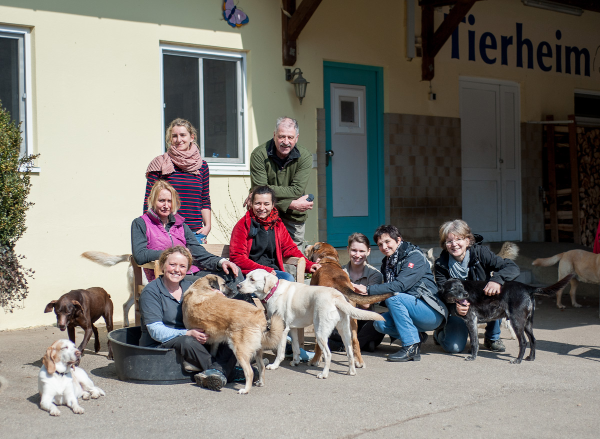Team - Tierheim Team